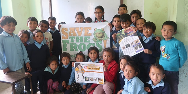 Save The Frogs Day Nepal 2019