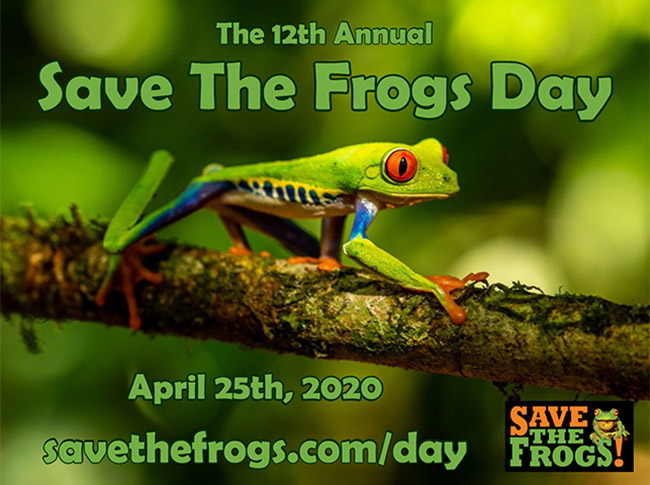 Save The Frogs Day 2020